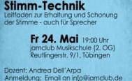 Abendseminar: Stimm-Technik am Freitag, 24. Mai